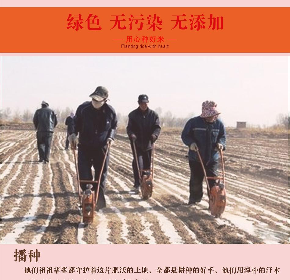 紅高粱詳情頁_03.jpg