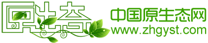 原生態公司logo-01.png
